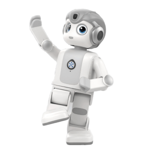 Semaine tastemaker Tabitha Goldstaub recommends mini humanoid by Unteach Robotics