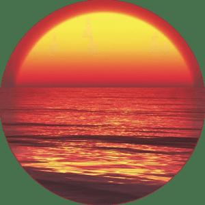 Semaine Tastemaker Olafur Eliasson Mindful Meditation