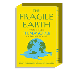 Semaine Tastemaker Olafur Eliasson The Fragile Earth